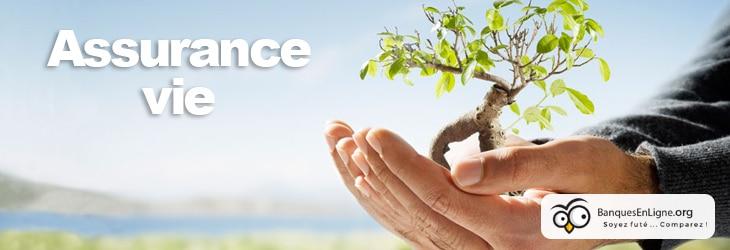 Comparatif Assurance Vie Quels Sont Les Meilleurs Contrats En Ligne