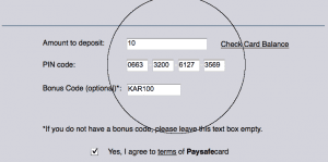 paysafecard-screenshot-4
