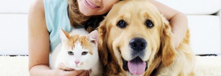 assurance animaux assureur en ligne